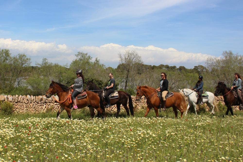 Mallorca Salinen Ausritt