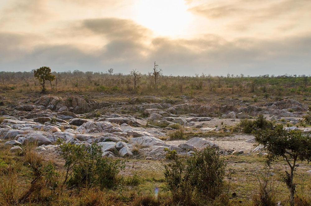 4-afrika-mosambik-natur-c-arianebille