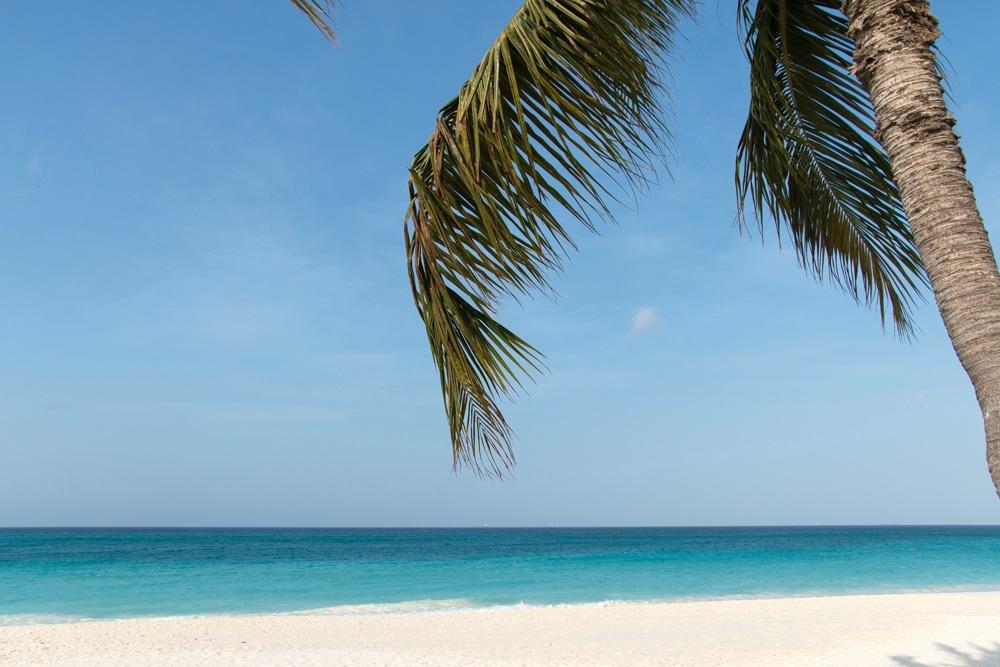 Druif Beach Traumstrand Karibik