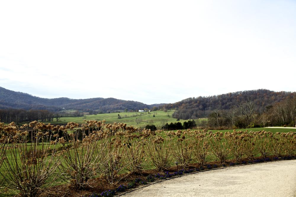 USA Virginia Landschaft Albemarle County