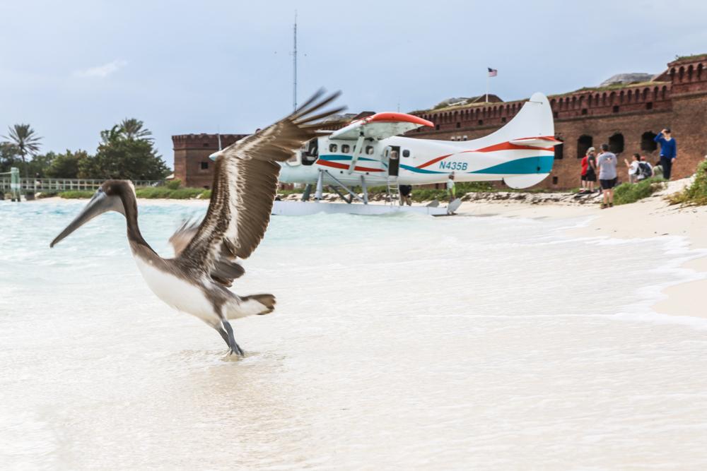 Wasserflugzeug Pelikan