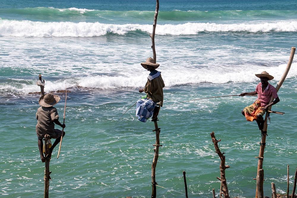 Sri Lanka Stelzenfischer Weligama