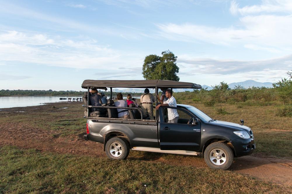 Sri Lanka Udawalawe Safari
