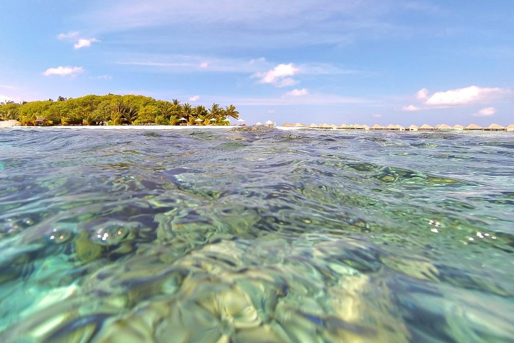 Schnorcheln bei den Malediven