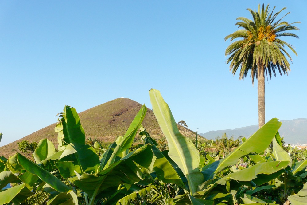 Spanien Kanarische Inseln Teneriffa Reiseblogger
