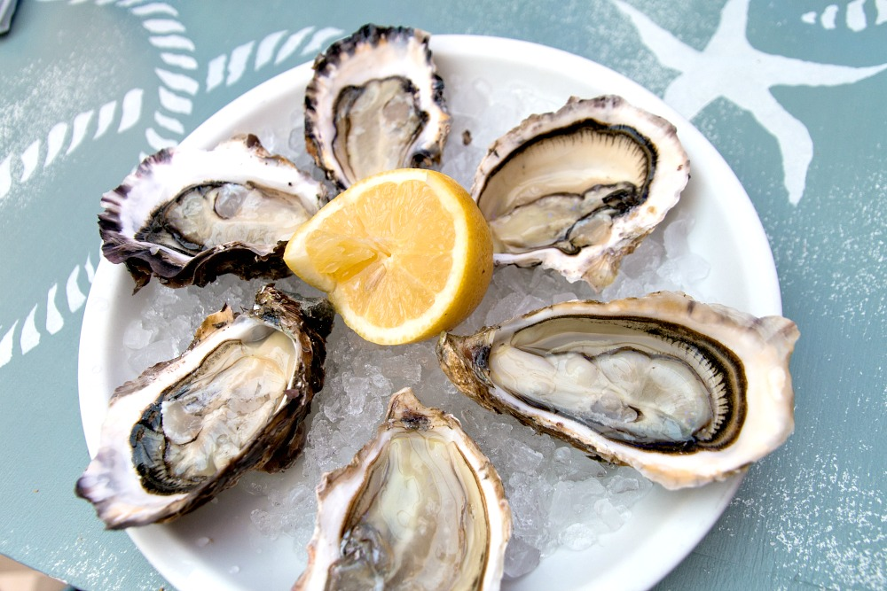 13 Austern Oysters Frankreich France Luxus Reise