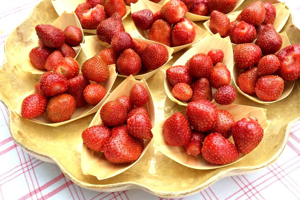 Erdbeeren Frankreich Südfrankreich Provence