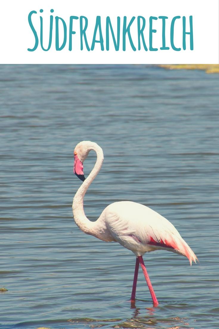 Flamingo / Südfrankreich Artikel zu Provence, Côte d'Azur & Camargue