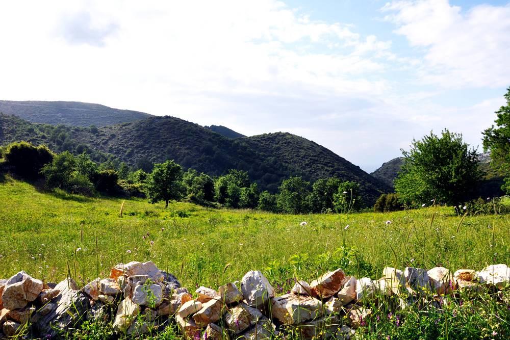 28_Korfu Old Periphia Landschaft