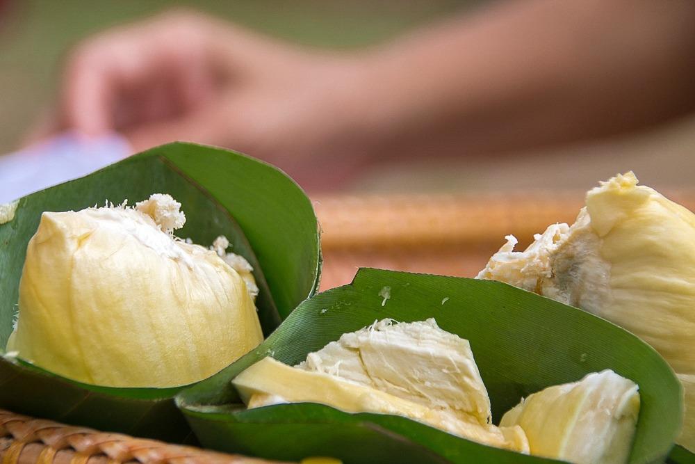 6 Thailand Durian Bananenblatt