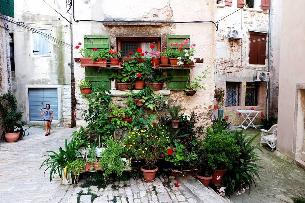 Bild 20 Gasse Blumenschmuck Altstadt Rovinj Istrien Kroatien