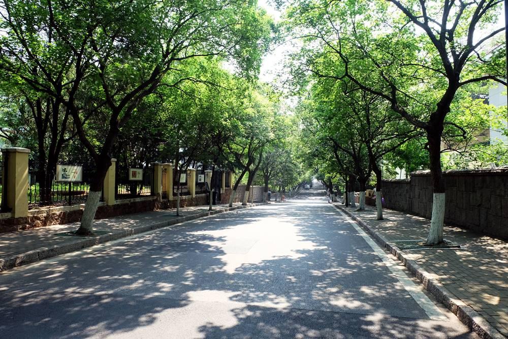 2 Badaguan Viertel Allee Bäume Qingdao Shandong China