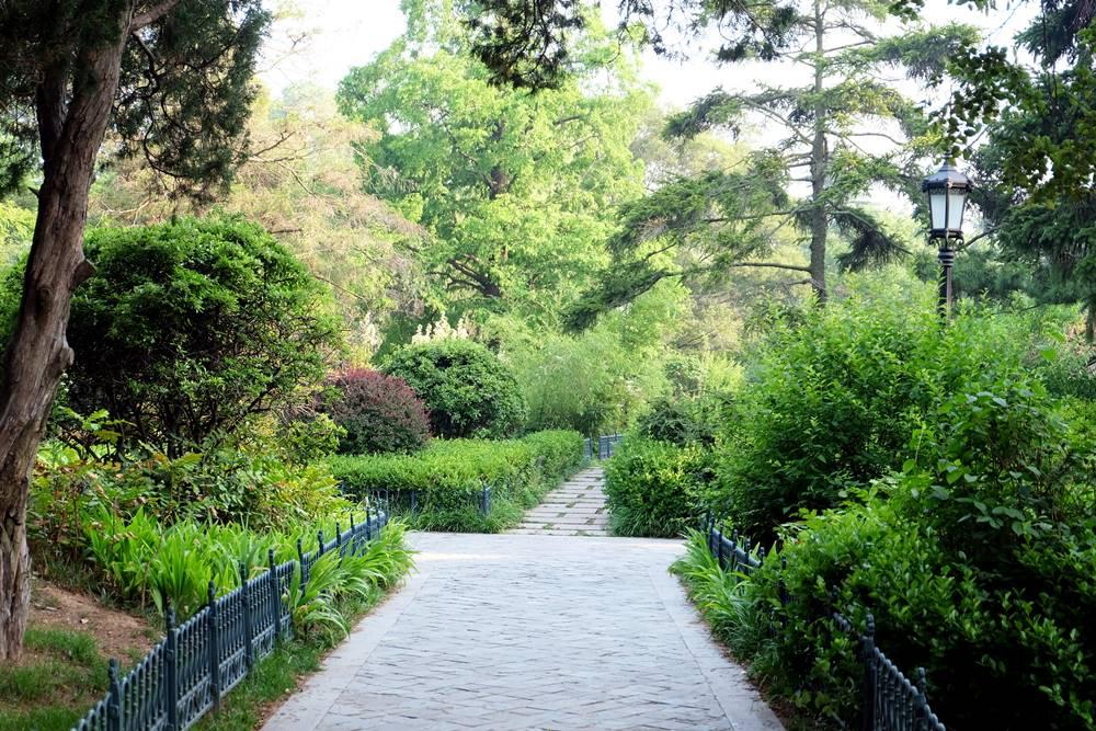 9 Zhongshan Park Qingdao Shandong China