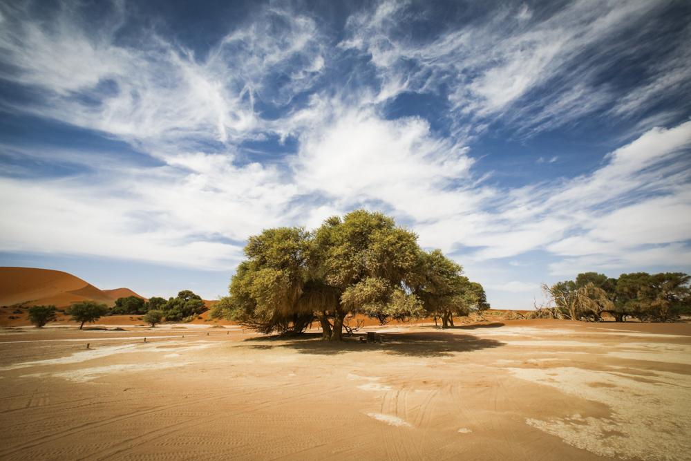2-namibia-landschaft-namib-wueste