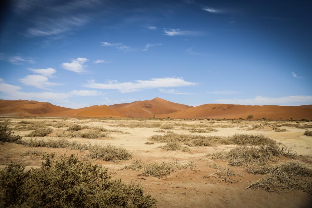 24-namibia-namib-wueste-sossusvlei