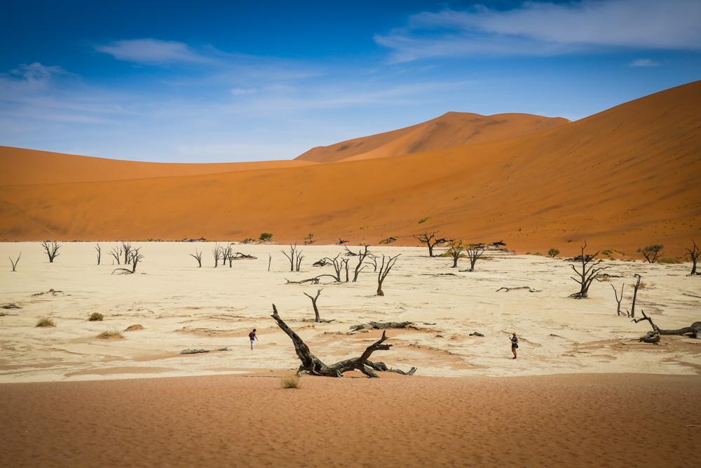 26-namibia-namib-wueste-deadvlei-reiseblog