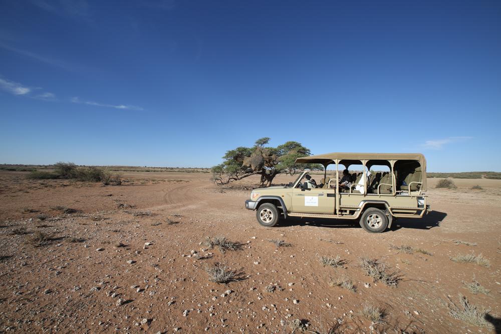 4-namibia-kalahari-wueste-jeep