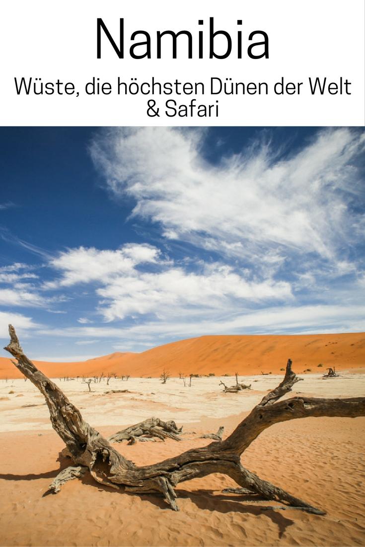 Namibia: Wüste, die höchsten Dünen der Welt & Safari. Lies mehr im Reiseblog zur Namib und Kalahari Wüste, Wildlife und Lodges.