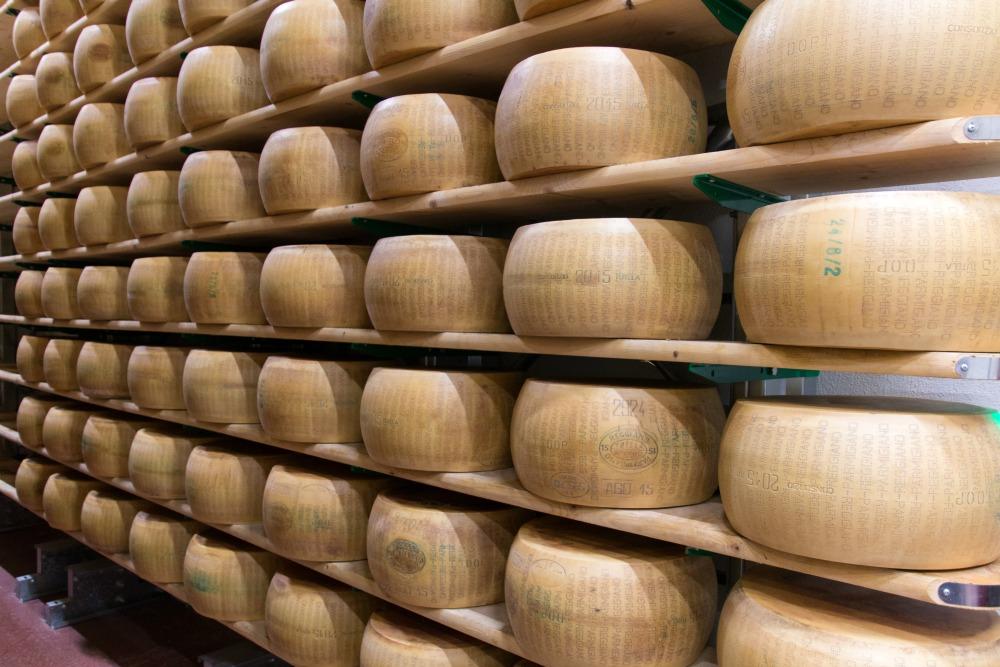 Hombre Parmesan Käserei bei Modena