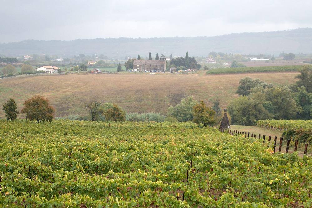 Weingut Drei Dona' - Tenuta La Palazza bei Forli