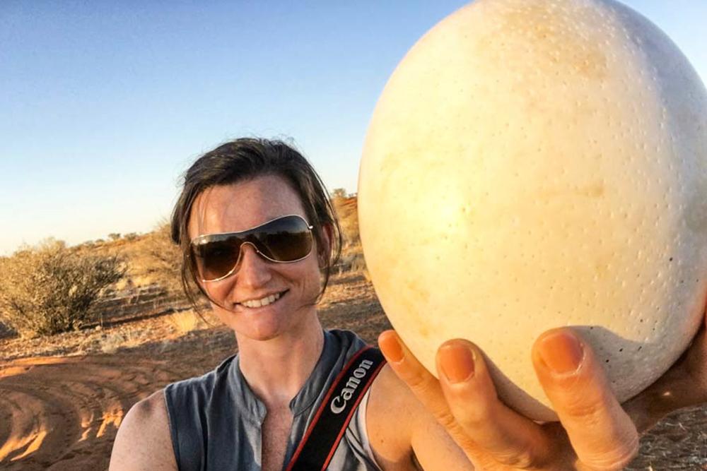 Straußenei in Namibia