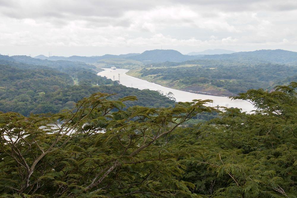Regenwald in Gamboa