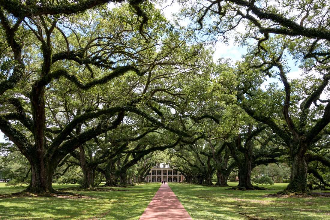 Oak Alley Plantage bei New Orleans