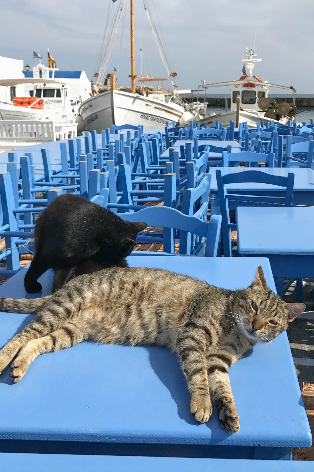 Naoussa auf Paros Griechenland