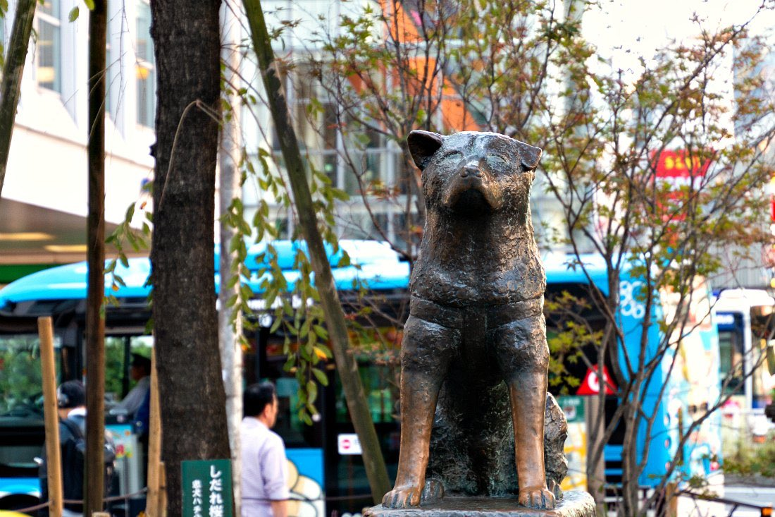 Hachiko Hundestatue in Tokio