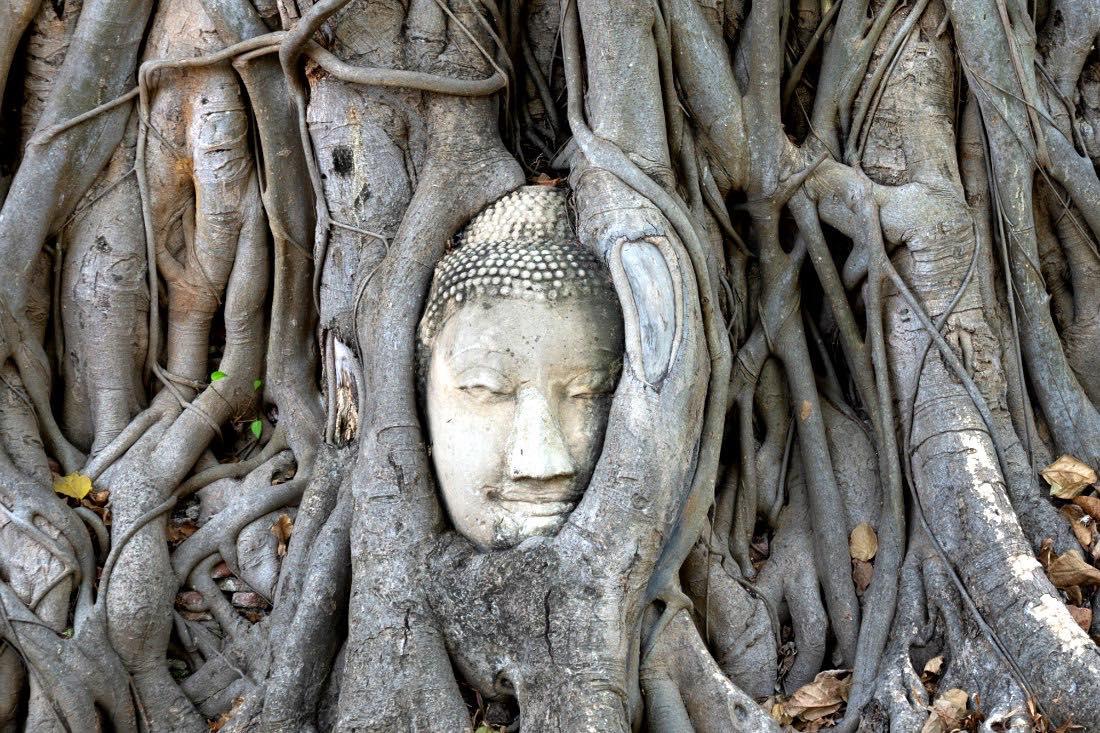 Ayutthaya Tagestour Thailand Urlaubstipps