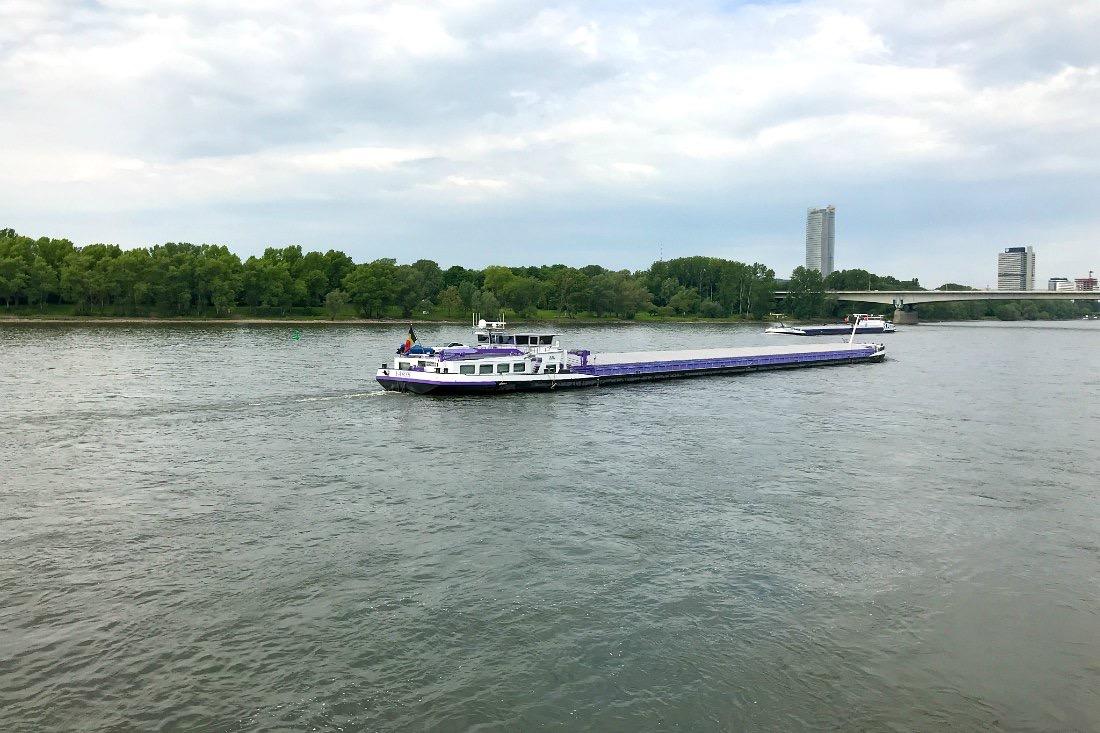 Rhein bei Bonn