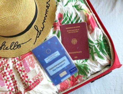Packliste Urlaub mit Hund