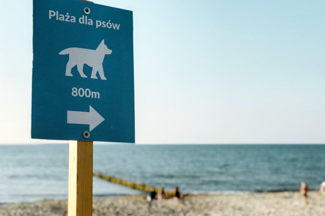 Hundestrände(plaza dla psow)in Kolberg polnische Ostsee