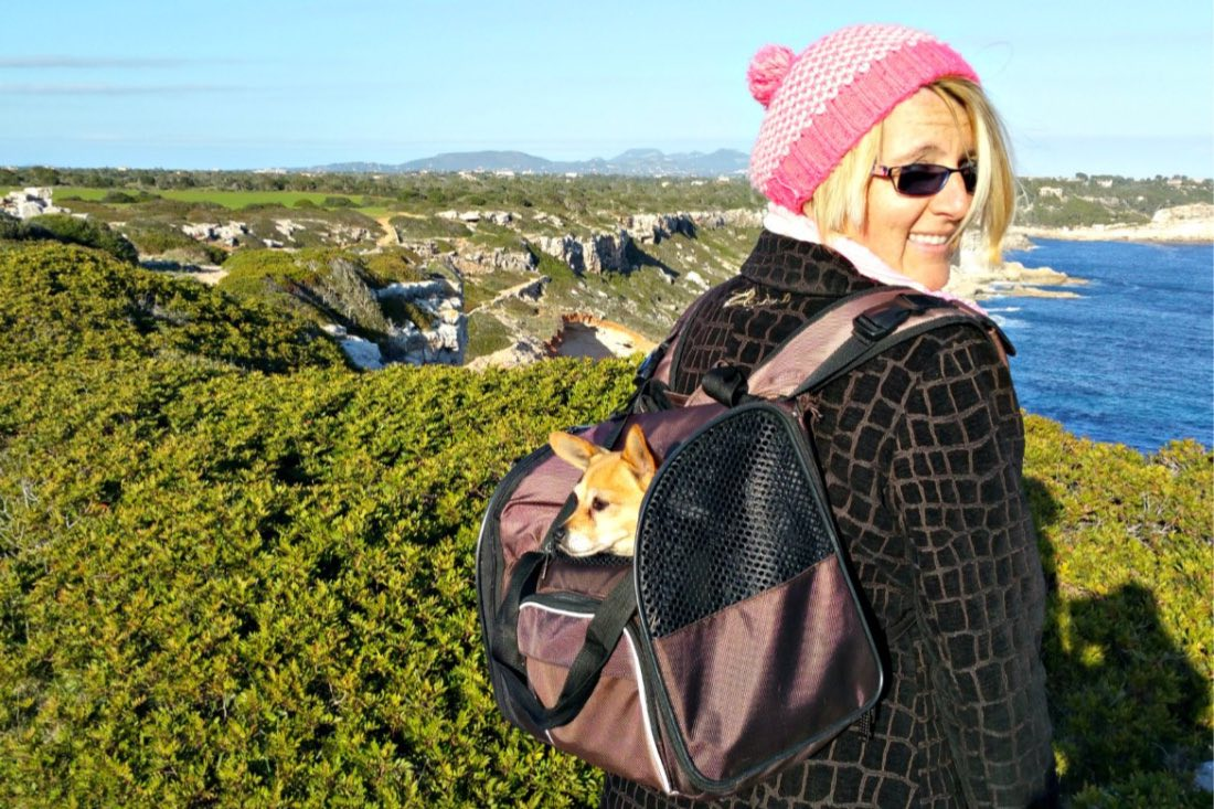 Hundeurlaub mit kleinem Hund