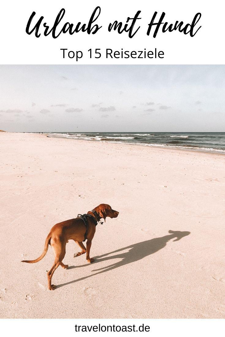 Hol dir die besten Tipps für den Urlaub mit Hund. Die schönsten Ziele für den Hundeurlaub – ob Deutschland oder Niederlande, Ostsee oder Berge, Ferienhaus oder Campingplatz. Geheimtipps für Ferien mit Hund sind auch dabei! / schöne Orte / beste Orte / Vierbeiner /  Urlaub in Deutschland