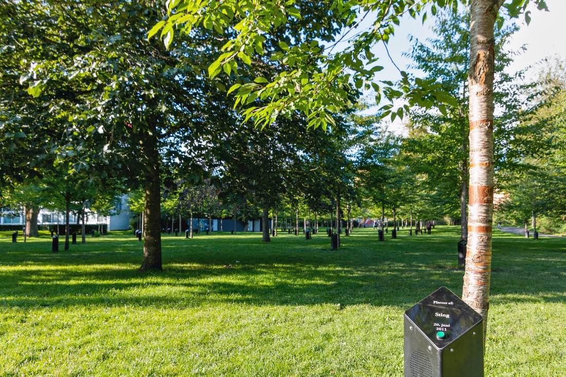 Park of Music Singende Bäume im Kildeparken
