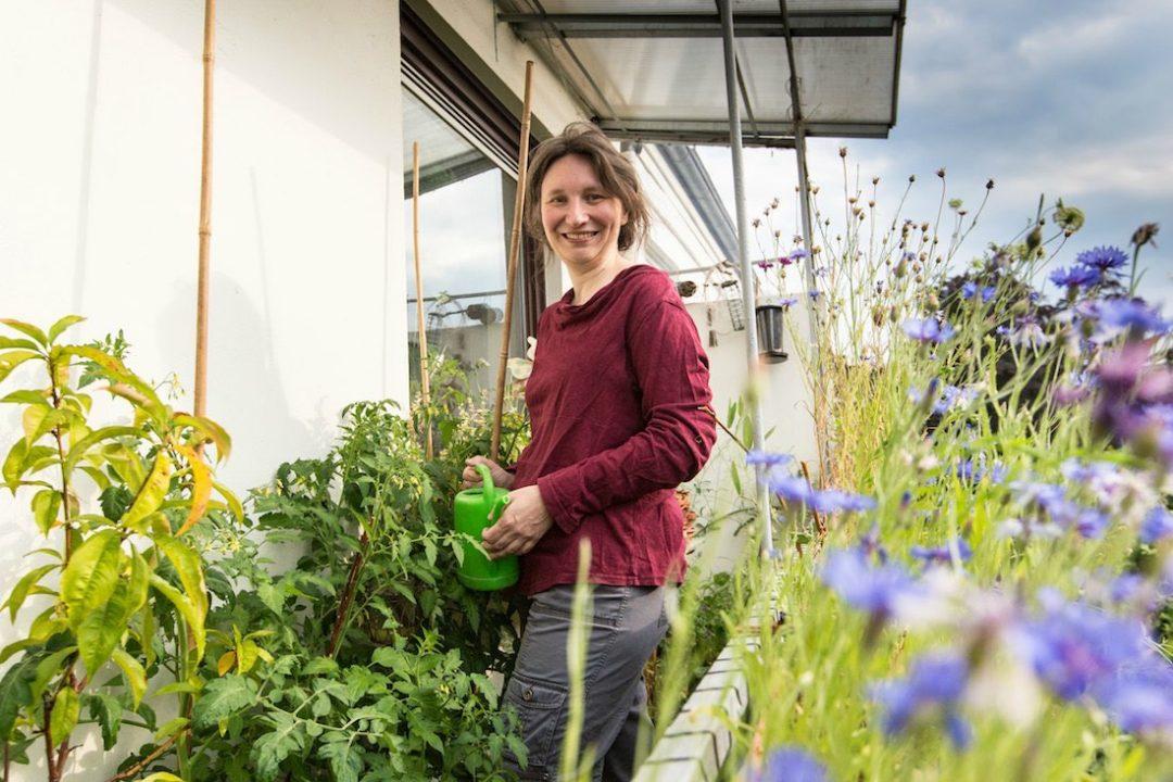 Balkonpflanzen Ideen Tipps