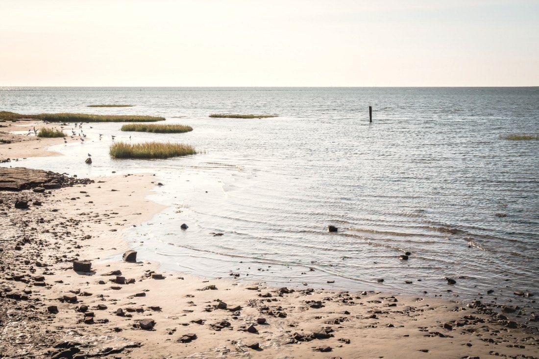 Wattenmeer auf Terschelling