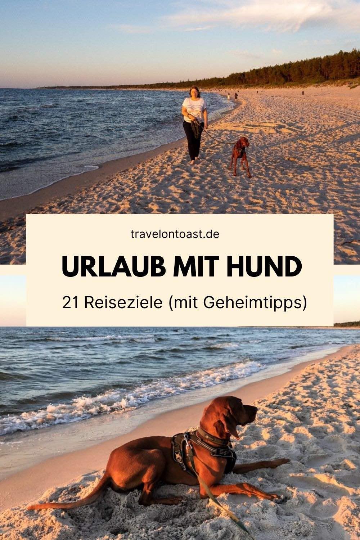 Sucht ihr Anregungen und Ideen, um euren Urlaub mit Hundplanen zu können? Im Artikel teilen acht Reiseblogger und Hundeblogger ihre besten Tipps und Erfahrungen zum Hundeurlaub - ob Deutschland oder Niederlande, Ostsee oder Berge, Ferienhaus oder Campingplatz. Der ein oder andere Geheimtipp ist auch dabei.