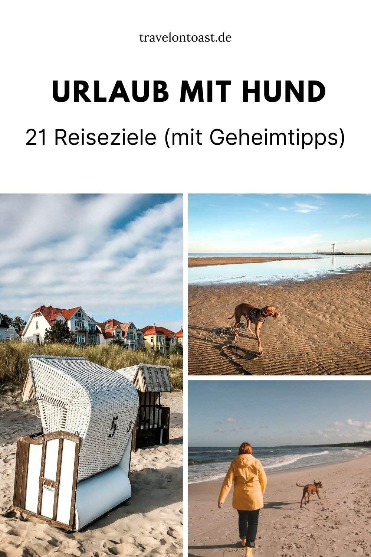Suchst du schöne Orte für euren Urlaub mit Hund? Im Blog verraten acht Reiseblogger ihre liebsten Reiseziele mit Hund. Ob Deutschland oder Holland, Ostsee oder Nordsee, Ferienwohnung oder Campingplatz. Der ein oder andere Geheimtipp ist auch dabei!
