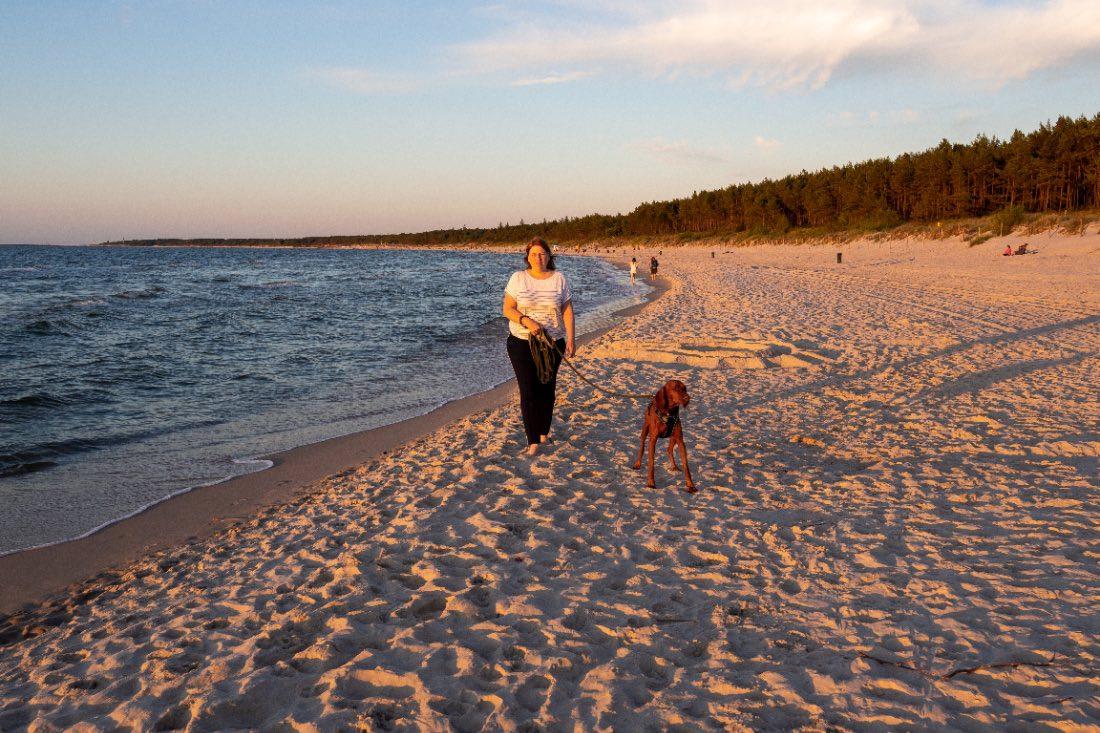 Urlaubsziele mit Hund