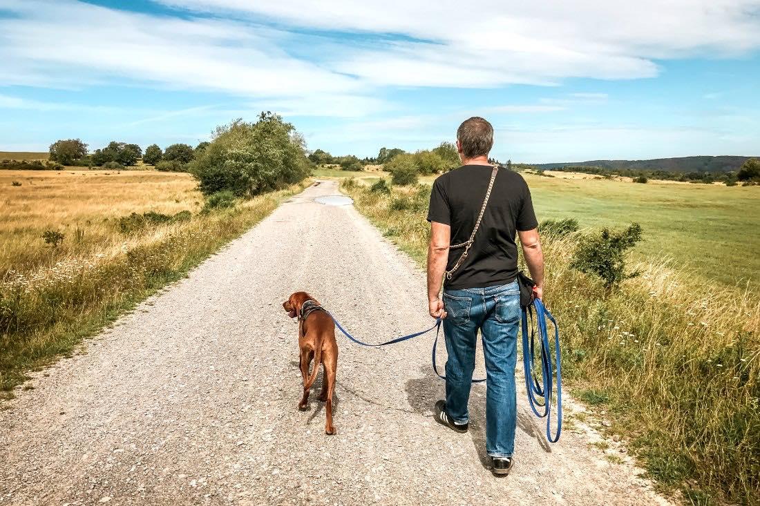 Urlaub in der Eifel mit Hund