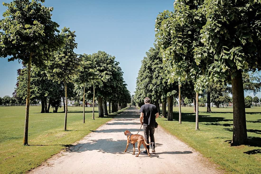 Ausflug mit Hund nach Xanten