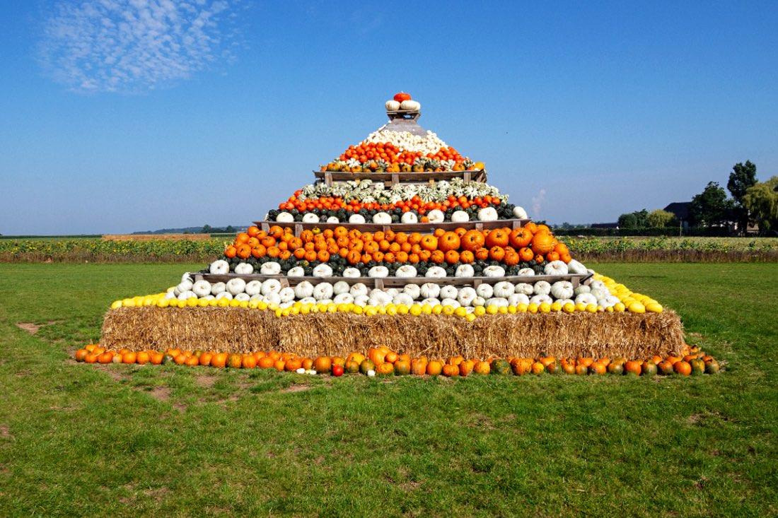 Pumpkin Pyramide in NRW