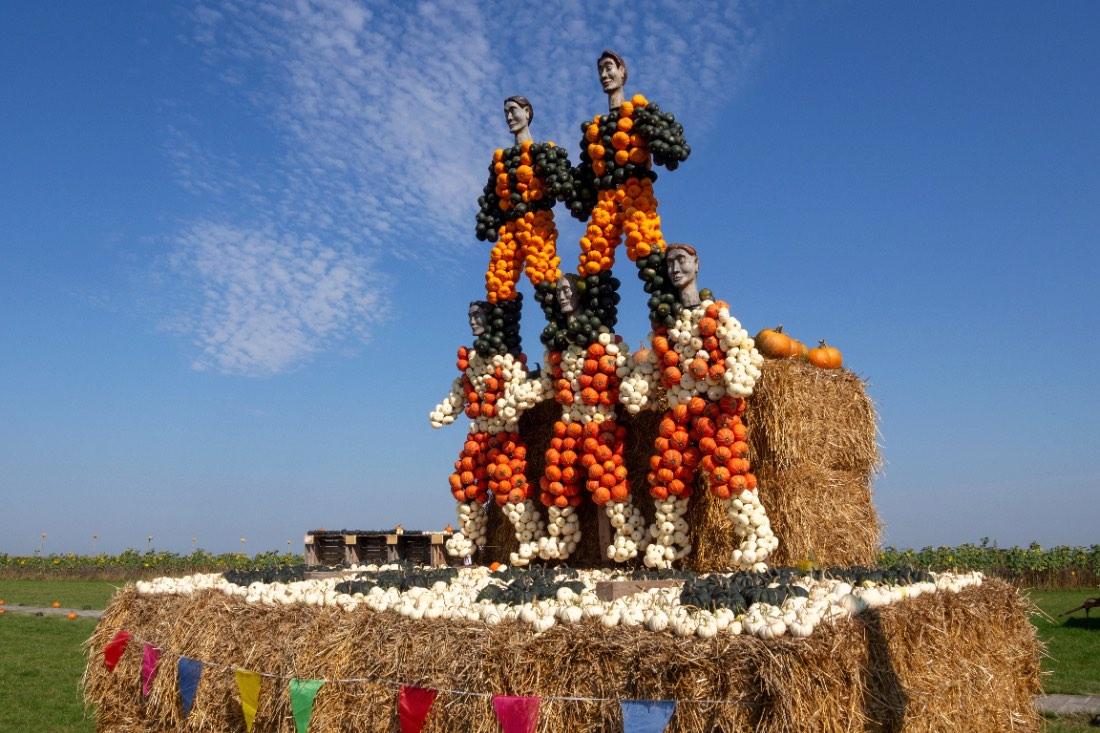 Pumpkin exhibition